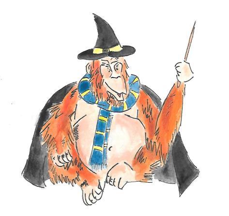yer a wizard orangutan