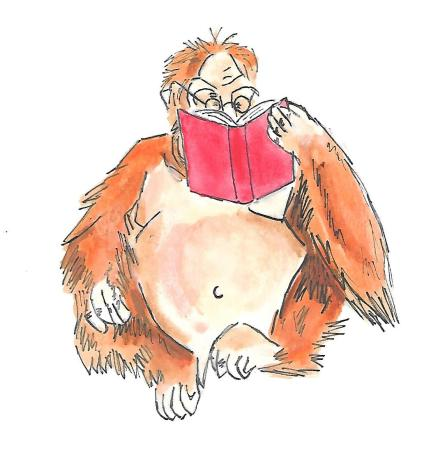 orangutan reading