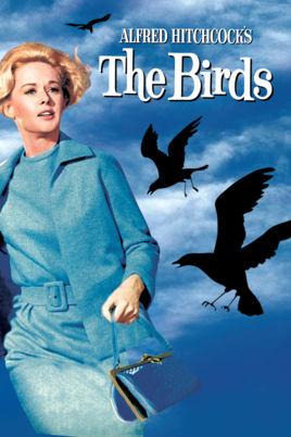 the birds film
